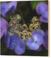 Iridescent Blue Wood Print