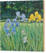 Irises In The Garden Wood Print by Betty McGlamery