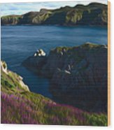 Irish Seascape Wood Print