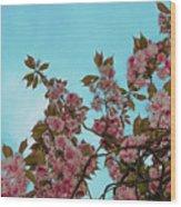 Irish Spring Wood Print