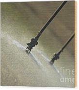 Irrigation Sprinklers Heads Wood Print