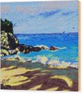 Island Coast Wood Print