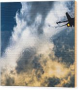 Israel Air Force F-16a Netz Wood Print