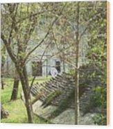 Jack Daniel Wood Print