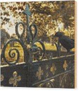 Jackdaw On Church Gates Wood Print by Amanda Elwell
