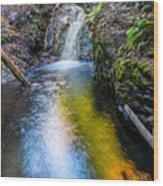 Jacob's Falls Wood Print