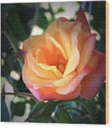 Jacob's Rose Wood Print