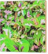 Jamaican Croton Wood Print