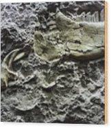 Jaw Bone Wood Print