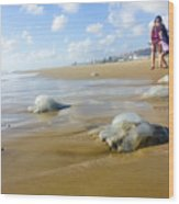 Jellyfish On The Beach  Wood Print