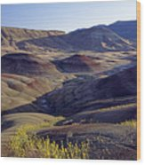 John Day Fossil Beds  Wood Print