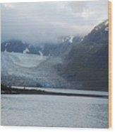 John Hopkins Glacier Wood Print
