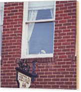 Jonesborough Tennessee - Window Over The Shop Wood Print
