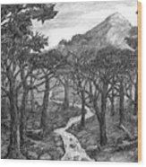 Jordan Creek Wood Print