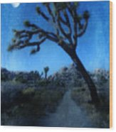 Joshua Trees At Night Wood Print
