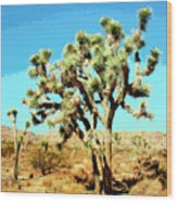 Joshua Trees Wood Print
