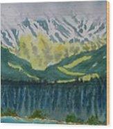 Juneau Landscape Wood Print