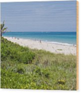 Juno Beach In Florida Wood Print