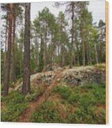 Kaukaloistenkallio Hillside View Wood Print