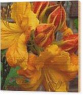 Klondyke Azalea Wood Print