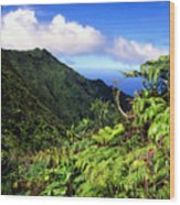 Koolau Summit Trail Wood Print
