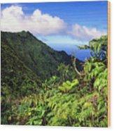 Koolau Summit Trail Wood Print