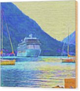 Kotor Harbor Wood Print