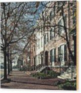 La Fayette Park In Autumn Wood Print