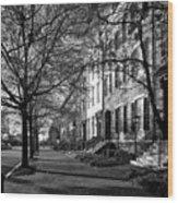 La Fayette Park - Washington D C Wood Print