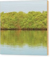 Lagoon On Santa Cruz Island In Galapagos Wood Print