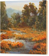 Lake County Poppies Wood Print