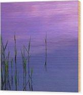 Lake Illmensee Wood Print