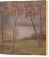 Lake Jackson Wood Print by Lyn Vic