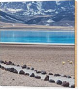 Lake Miscanti In Chile Wood Print