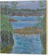 Lake Okahumpka Park Wood Print