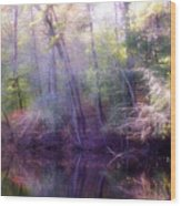 Lake Waterford Wood Print
