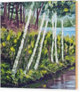 Lakeside Birches Wood Print