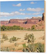 Land Of Canyons Wood Print
