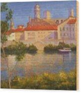 Landscape At Arles France Wood Print