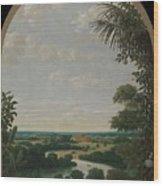 Landscape In Brazil Wood Print