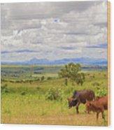 Landscape In Malawi Wood Print
