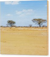 Landscape Near Laisamis, Kenya Wood Print