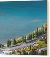 Landscape Of Lake In The South Island, Queenstown New Zealand  Wood Print