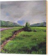 Landscape Sketching Wood Print