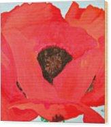 Large Poppy Wood Print
