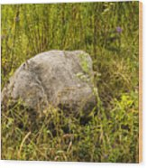 Large Rock And Purple Asters Wood Print