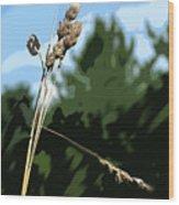 Last Straw Wood Print
