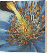 Lazuline Wood Print