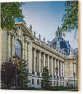 Le Petit Palais Wood Print
