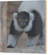 Lemur Wood Print